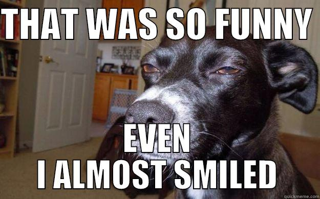 THAT WAS SO FUNNY  EVEN I ALMOST SMILED Skeptical Mutt
