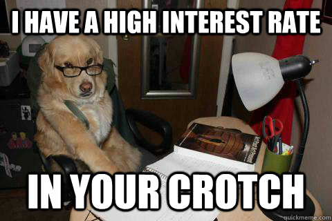 I have a high interest rate In your crotch - I have a high interest rate In your crotch  Financial Advice Dog