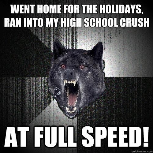 Went home for the holidays, ran into my high school crush AT full speed! - Went home for the holidays, ran into my high school crush AT full speed!  Insanity Wolf