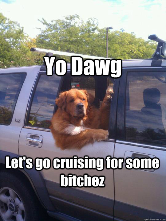 Yo Dawg Let's go cruising for some bitchez - Yo Dawg Let's go cruising for some bitchez  Womans Best Friend Dog