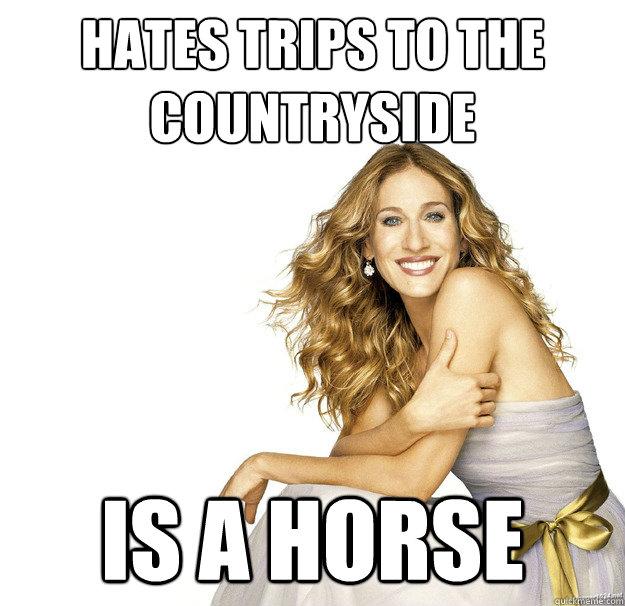 Sjp Horse Meme
