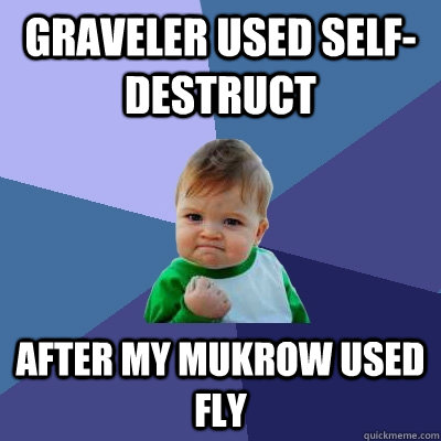 Graveler used self-destruct  after my mukrow used fly - Graveler used self-destruct  after my mukrow used fly  Success Kid