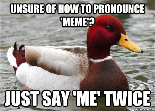 Unsure of how to pronounce 'meme'? Just say 'me' twice - Unsure of how to pronounce 'meme'? Just say 'me' twice  Malicious Advice Mallard