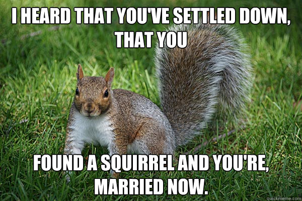 I heard that you've settled down, that you found a squirrel and you're, married now.