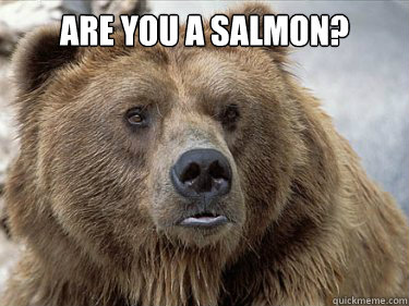are you a salmon?