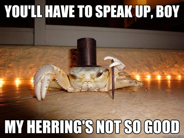 You'll have to speak up, boy My Herring's not so good  Fancy Crab