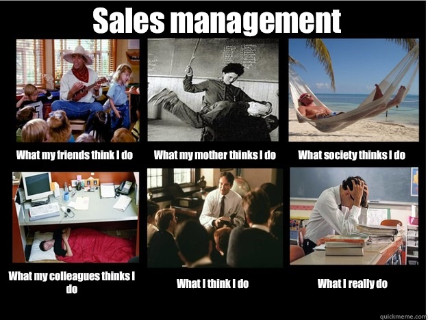 Sales Management What My Friends Think I Do What My Mother