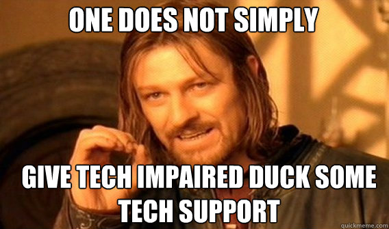One does not simply give tech impaired duck some tech support - One does not simply give tech impaired duck some tech support  Boromirmod