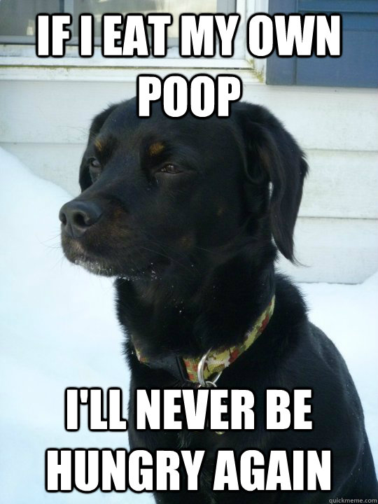 If I eat my own poop I'll never be hungry again - If I eat my own poop I'll never be hungry again  Philosophical Puppy