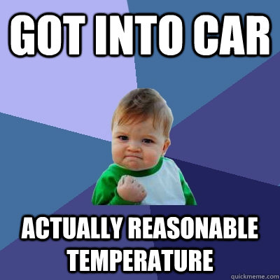 Got into car actually reasonable temperature - Got into car actually reasonable temperature  Success Kid