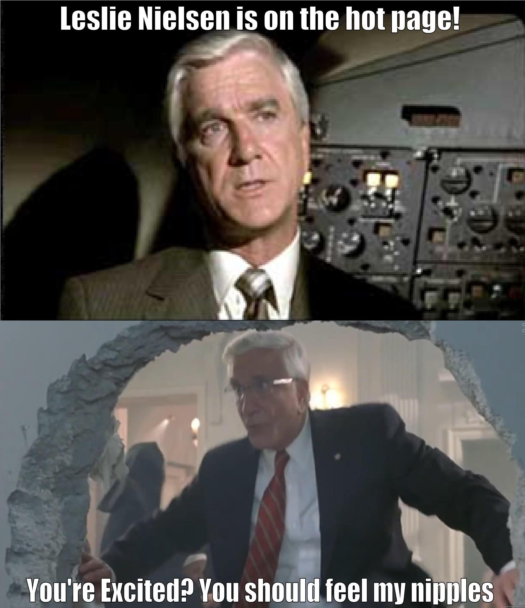 Leslie Nielsen Airplane Meme