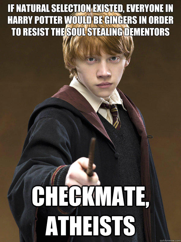 if natural selection existed, everyone in harry potter would be gingers in order to resist the soul stealing dementors checkmate, atheists - if natural selection existed, everyone in harry potter would be gingers in order to resist the soul stealing dementors checkmate, atheists  Ron Weasley
