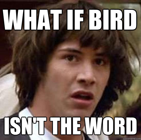 what if bird isn't the word - what if bird isn't the word  conspiracy keanu