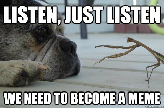 Listen, just listen we need to become a meme - Listen, just listen we need to become a meme  Lecturing Mantis