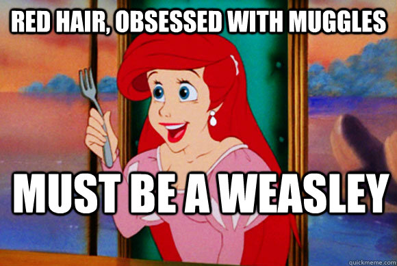 Red hair, obsessed with muggles Must be a weasley