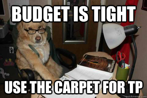 Budget is tight use the carpet for tp  Financial Advice Dog