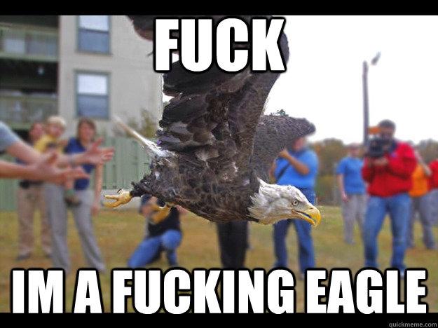 FUCK Im a fucking eagle - FUCK Im a fucking eagle  Epiphany Eagle