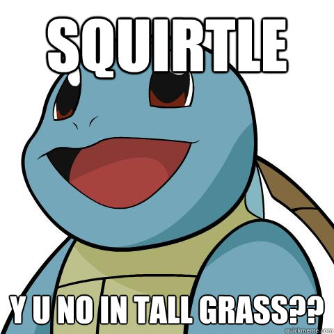 squirtle Y U No In tall grass??  Squirtle