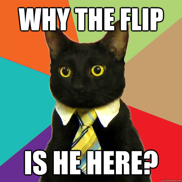 why the flip is he here? - why the flip is he here?  Business Cat