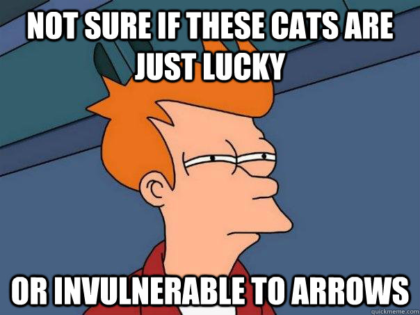 not sure if these cats are just lucky or invulnerable to arrows - not sure if these cats are just lucky or invulnerable to arrows  Futurama Fry