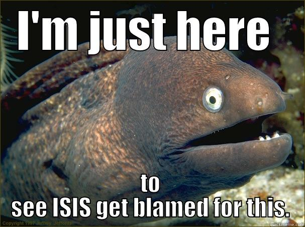 I'M JUST HERE  TO SEE ISIS GET BLAMED FOR THIS. Bad Joke Eel
