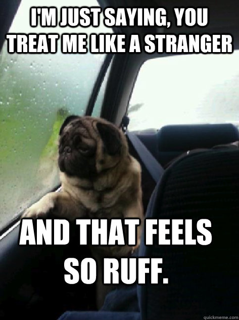 I'm just saying, you treat me like a stranger and that feels so ruff.  - I'm just saying, you treat me like a stranger and that feels so ruff.   Introspective Pug