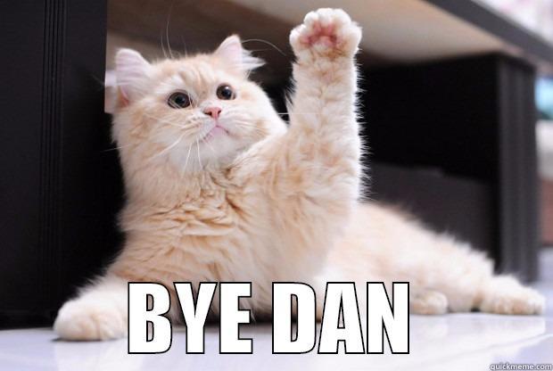 Office Cat Says Bye Quickmeme