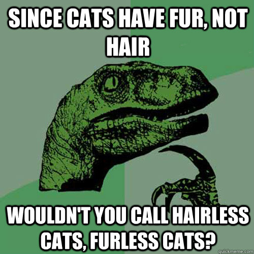 Since cats have fur, not hair wouldn't you call hairless cats, furless cats? - Since cats have fur, not hair wouldn't you call hairless cats, furless cats?  Philosoraptor