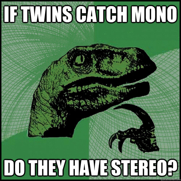 If twins catch mono Do they have stereo?