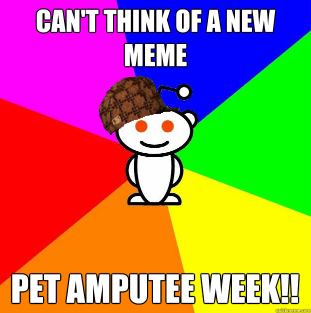Can't think of a new meme pet amputee week!! - Can't think of a new meme pet amputee week!!  Scumbag Redditor