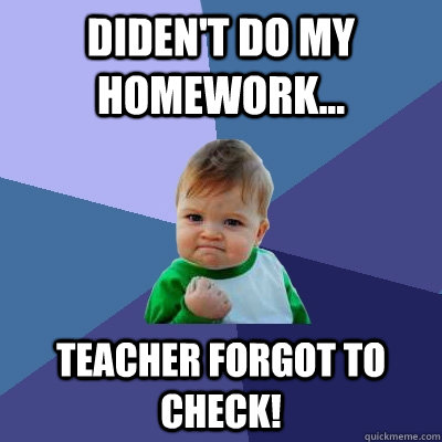 Write my homework checker