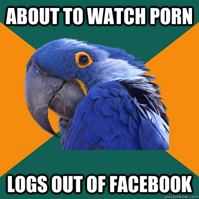 About to watch porn Logs out of facebook - About to watch porn Logs out of facebook  Paranoid Parrot