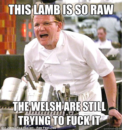 This lamb is so raw the welsh are still trying to fuck it  gordon ramsay