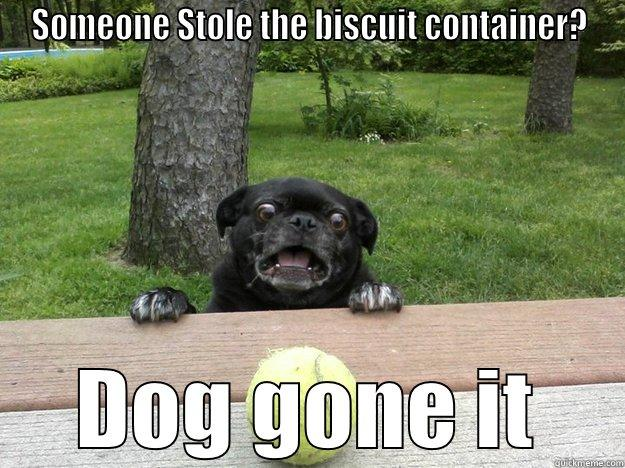 SOMEONE STOLE THE BISCUIT CONTAINER? DOG GONE IT Berks Dog