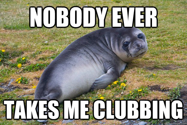 nobody ever takes me clubbing - nobody ever takes me clubbing  sad seal