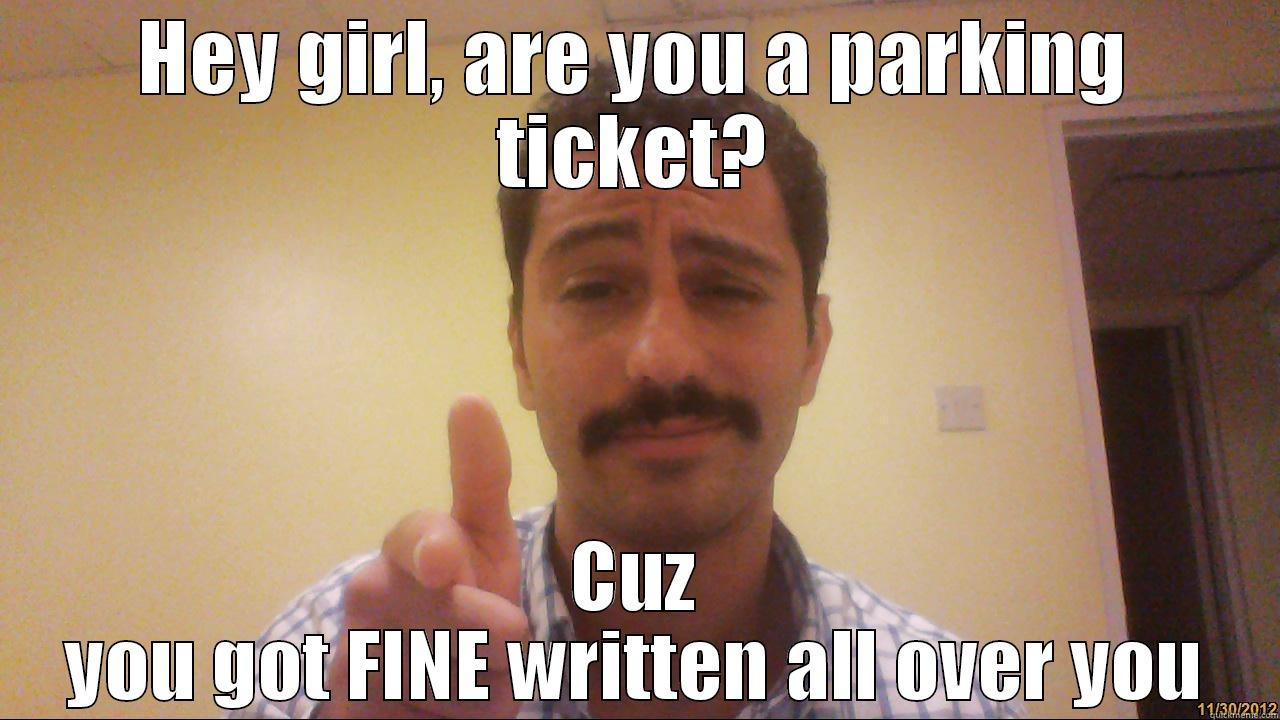 how to ask for ask for confession of parking ticket