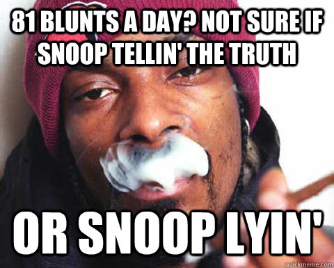 81 blunts a day? not sure if snoop tellin' the truth or snoop lyin'