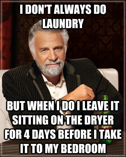 I don't always do laundry but when I do I leave it sitting on the dryer for 4 days before i take it to my bedroom - I don't always do laundry but when I do I leave it sitting on the dryer for 4 days before i take it to my bedroom  The Most Interesting Man In The World