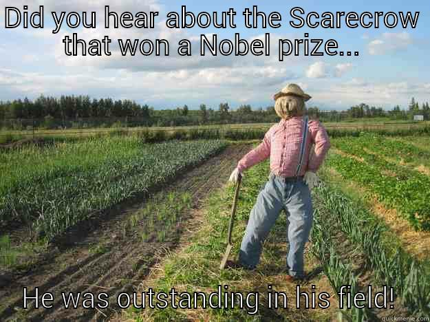 DID YOU HEAR ABOUT THE SCARECROW THAT WON A NOBEL PRIZE... HE WAS OUTSTANDING IN HIS FIELD!  Scarecrow