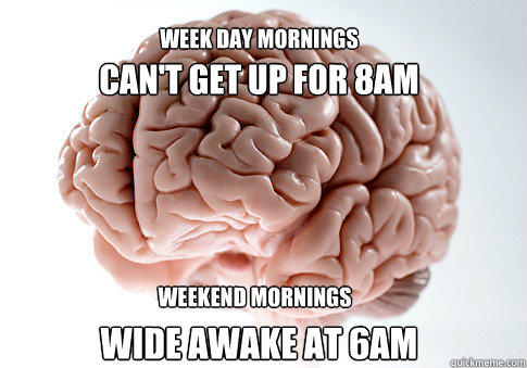 can't get up for 8am wide awake at 6am WEEK DAY MORNINGS WEEKEND MORNINGS - can't get up for 8am wide awake at 6am WEEK DAY MORNINGS WEEKEND MORNINGS  Scumbag Brain