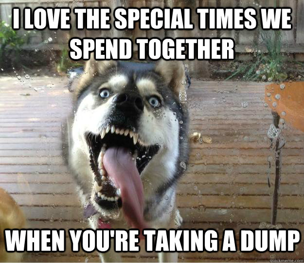 I love the special times we spend together When you're taking a dump - I love the special times we spend together When you're taking a dump  Overly Attached Dog