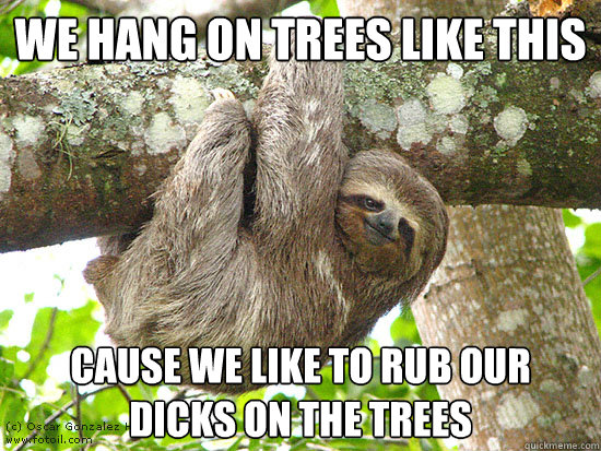 we hang on trees like this cause we like to rub our dicks on the trees