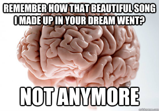 Remember how that beautiful song i made up in your dream went? not anymore - Remember how that beautiful song i made up in your dream went? not anymore  Scumbag brain on life