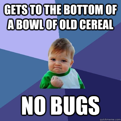 Gets to the bottom of a bowl of old cereal No bugs - Gets to the bottom of a bowl of old cereal No bugs  Success Kid