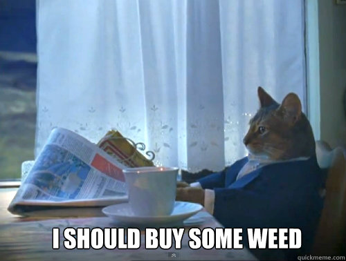 I SHOULD BUY SOME WEED -  I SHOULD BUY SOME WEED  Misc