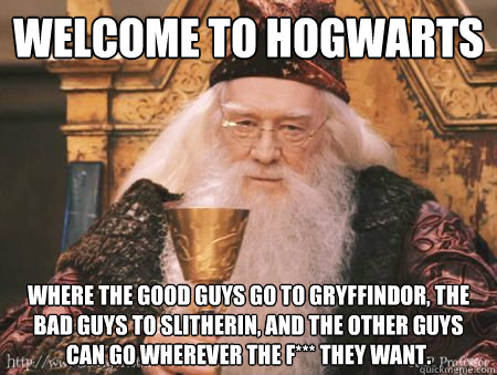 Welcome to Hogwarts Where the good guys go to Gryffindor, the bad guys to Slitherin, and the other guys can go wherever the f*** they want.