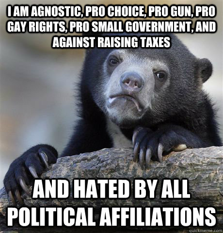I am agnostic, pro choice, pro gun, pro gay rights, pro small government, and against raising taxes and hated by all political affiliations - I am agnostic, pro choice, pro gun, pro gay rights, pro small government, and against raising taxes and hated by all political affiliations  Confession Bear