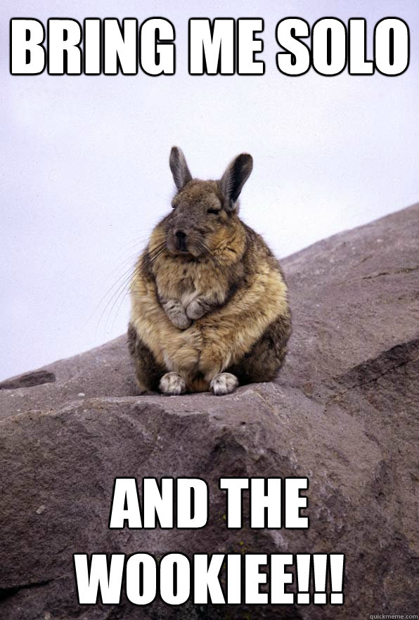 Bring me Solo and the Wookiee!!!  Wise Wondering Viscacha