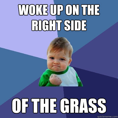 woke up on the right side of the grass - woke up on the right side of the grass  Success Kid