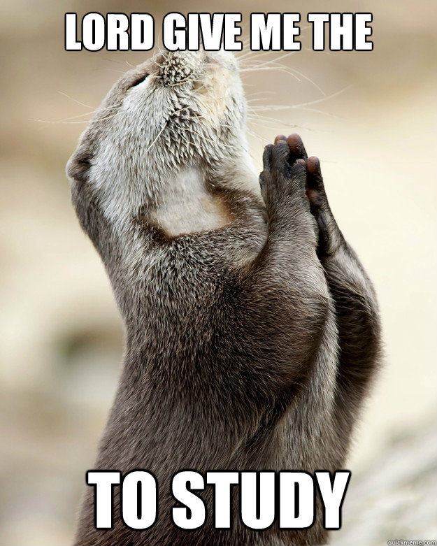 lord give me the strength to study